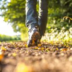 Green Exercise: The Benefits of Walking and Exercising in Nature